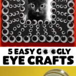 5-easy-googly-eye-videos